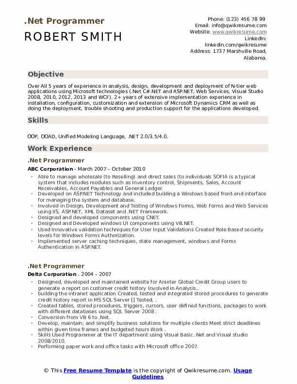 net programer resume