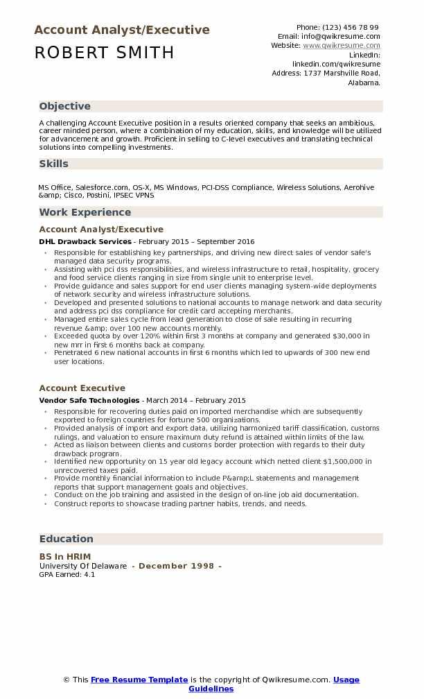 Account Analyst/Executive Resume Model