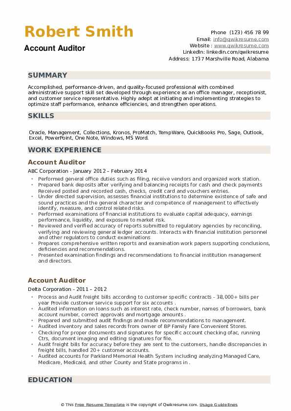 Account Auditor Resume example