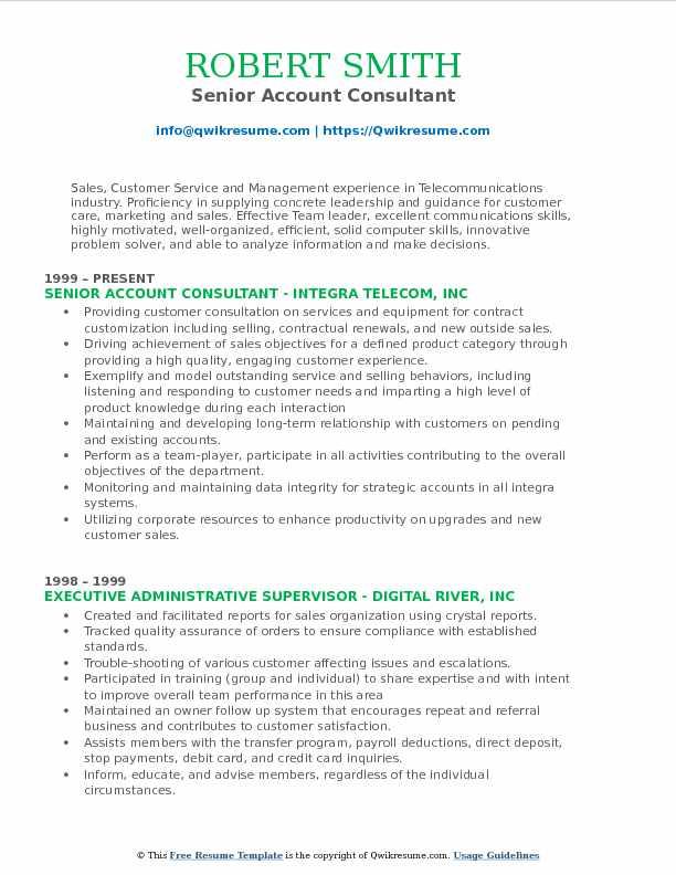 Senior Account Consultant Resume Model