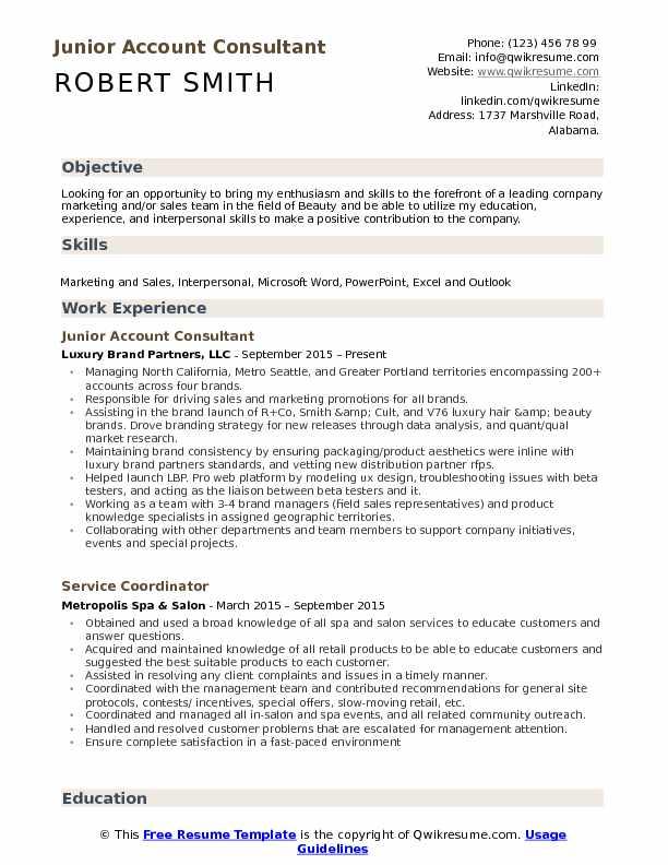 Account Consultant Resume example
