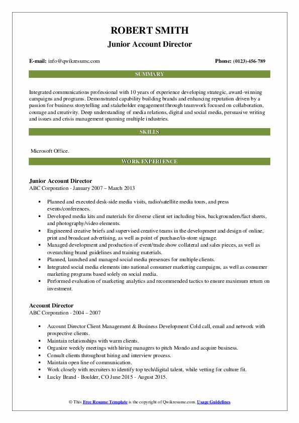 Junior Account Director Resume Example