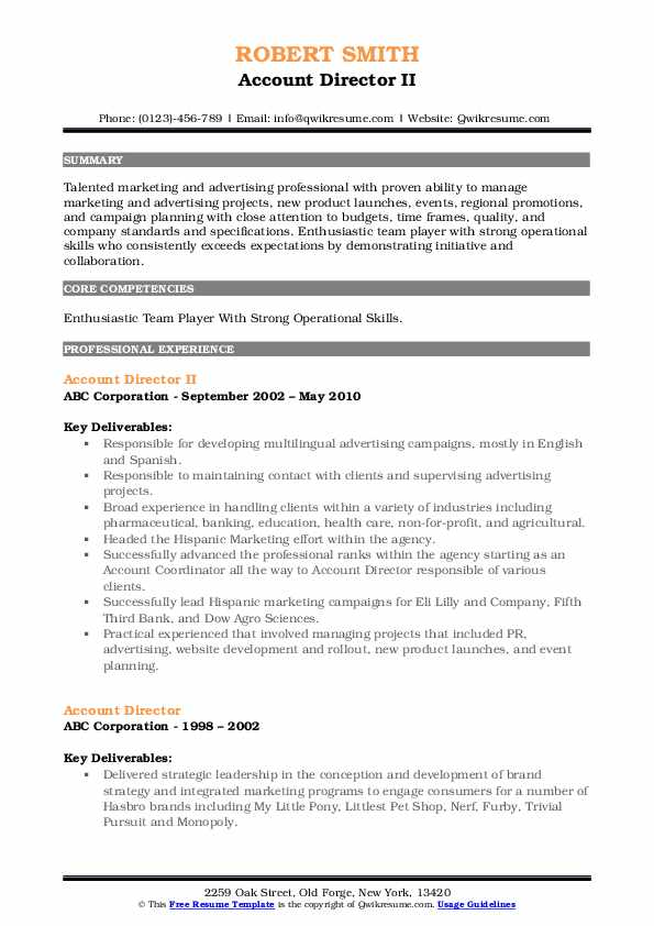 Account Director II Resume Template