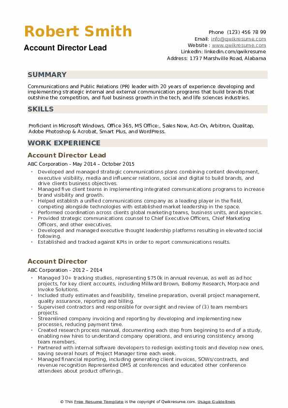 Account Director Lead Resume Format