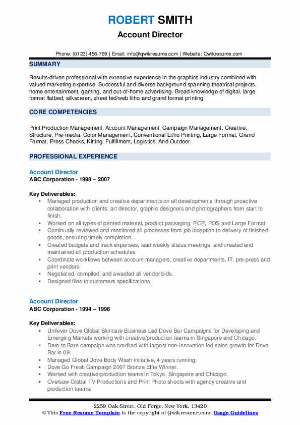 Account Director Resume example
