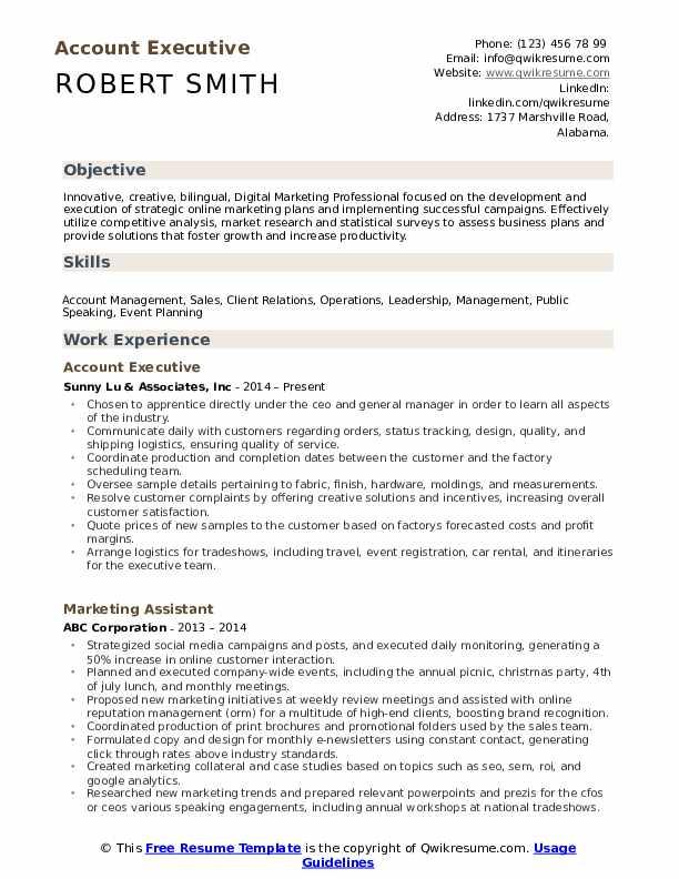 Account Executive Resume Template