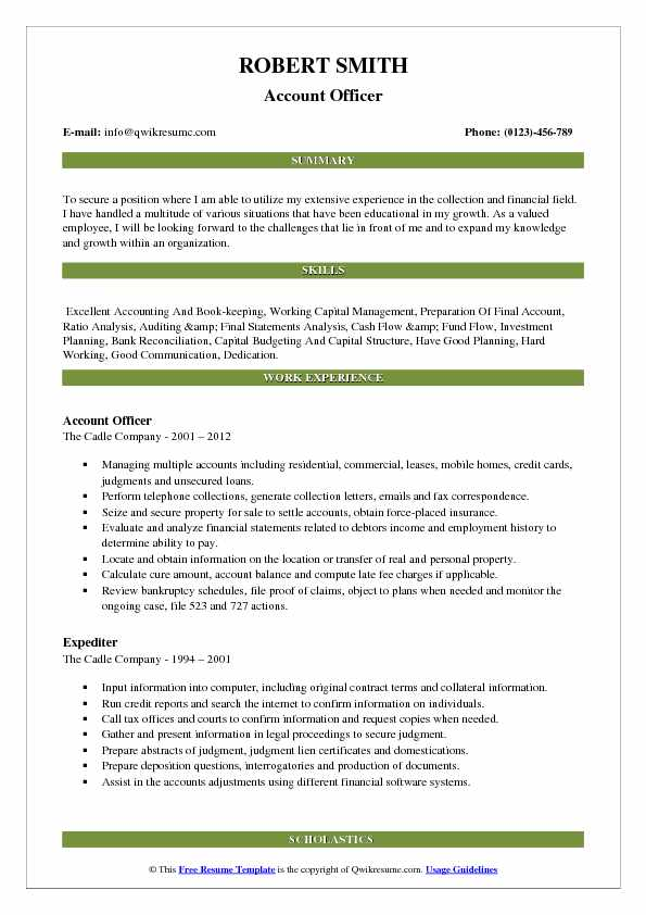Account Officer Resume Model