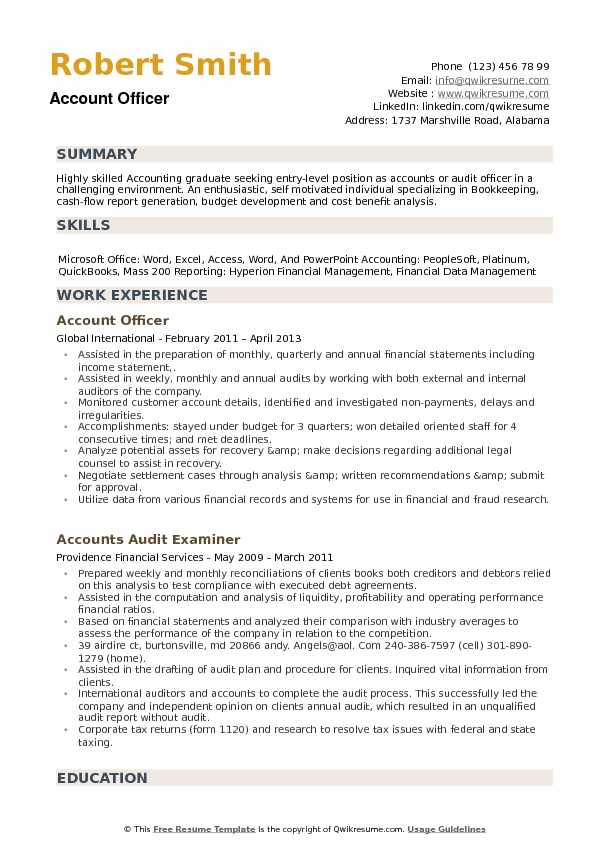 Account Officer Resume example