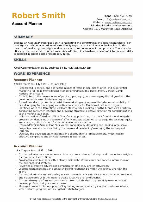 Account Planner Resume example