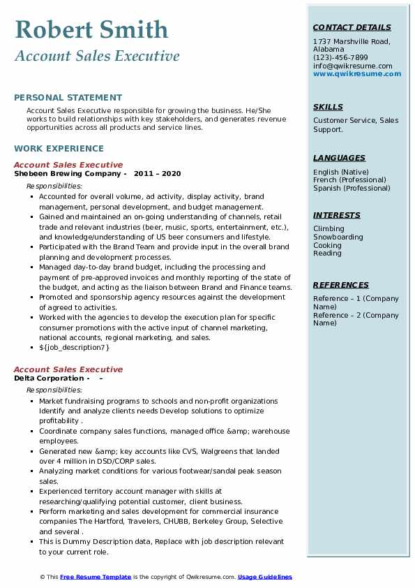 Account Sales Executive Resume example
