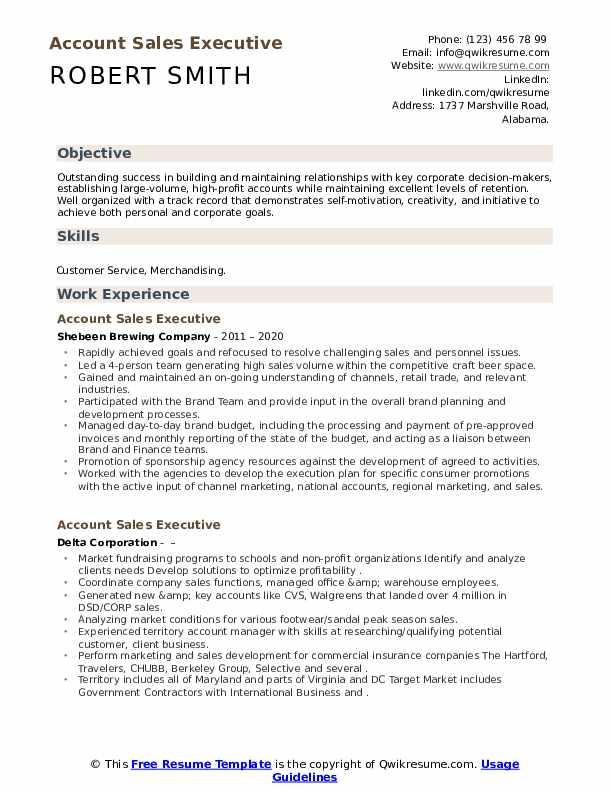Account Sales Executive Resume example