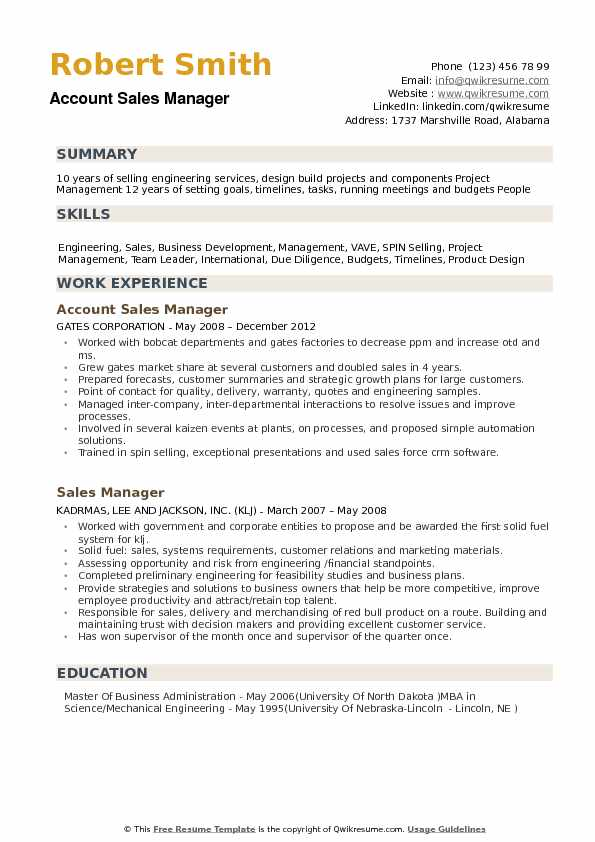 Account Sales Manager Resume example
