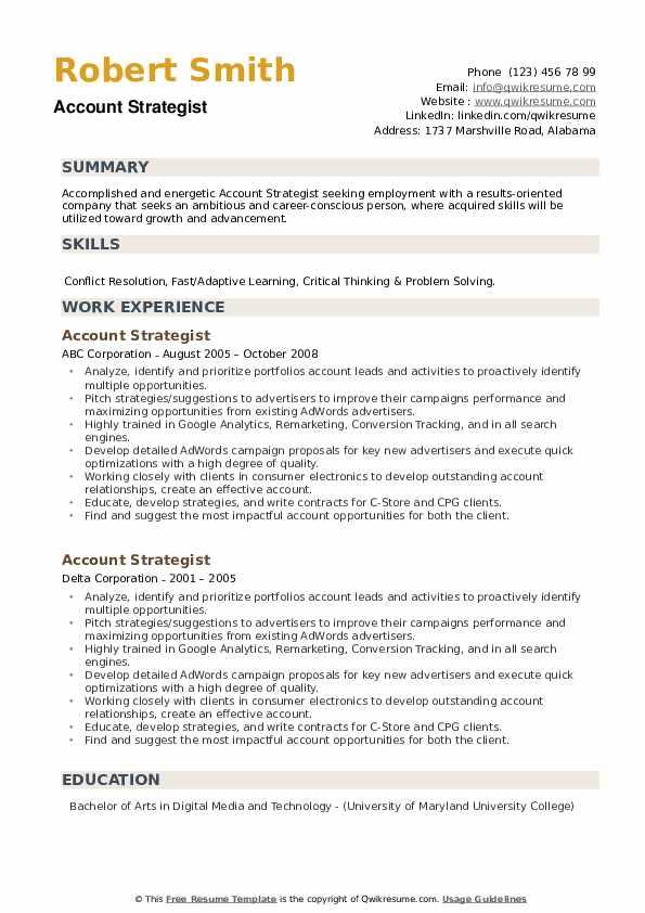 Account Strategist Resume example
