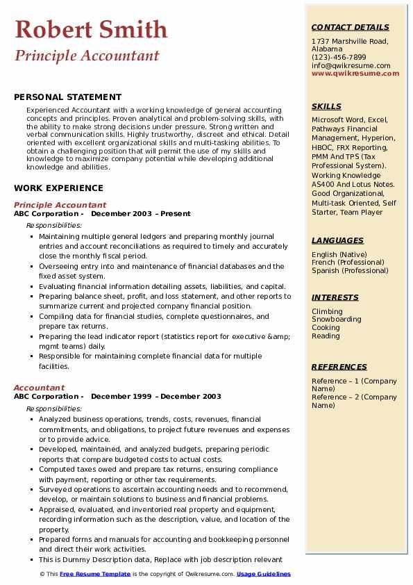 Principle Accountant Resume Example