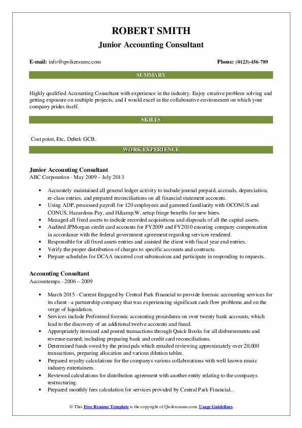 Junior Accounting Consultant Resume Template