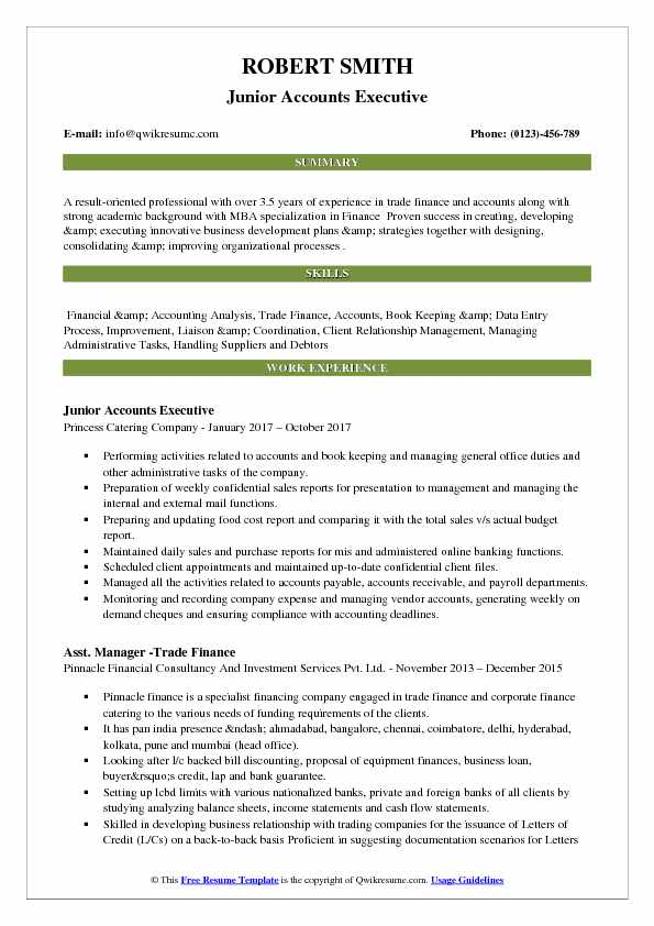 Junior Accounts Executive Resume Format