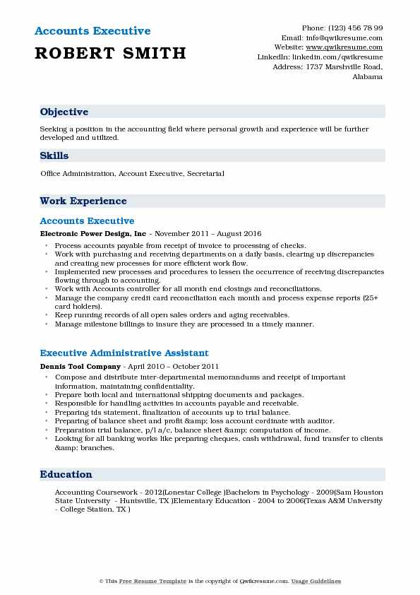 Accounts Executive Resume Template