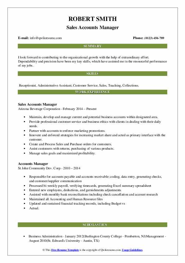 Sales Accounts Manager Resume Model