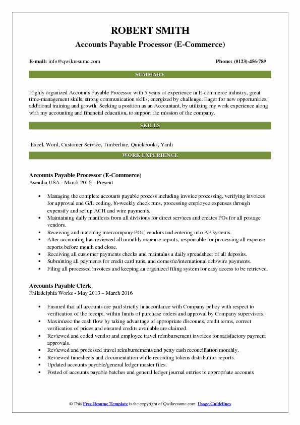 Accounts Payable Processor (E-Commerce) Resume Template