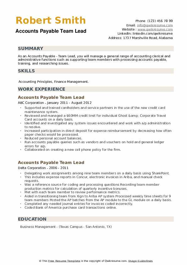 Accounts Payable Team Lead Resume example