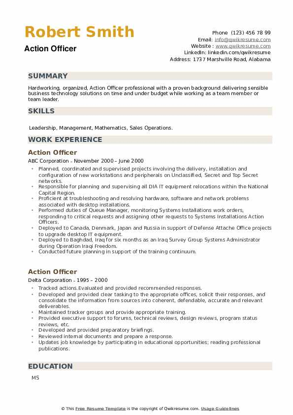 Action Officer Resume example