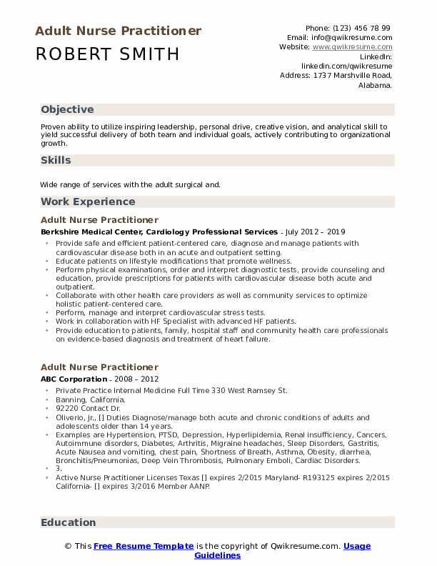 Adult Nurse Practitioner Resume Model