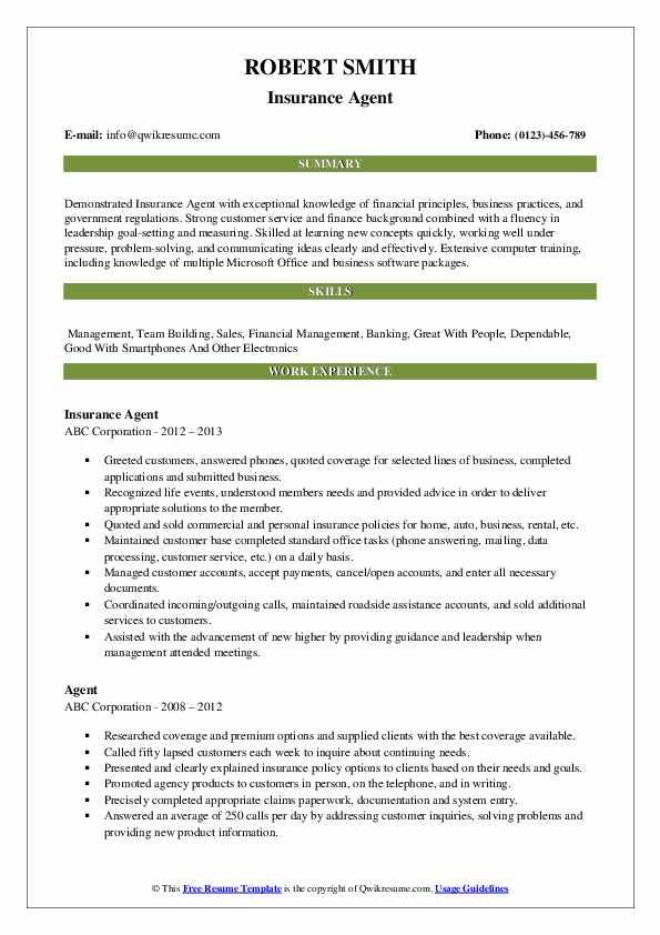 Insurance Agent Resume Model