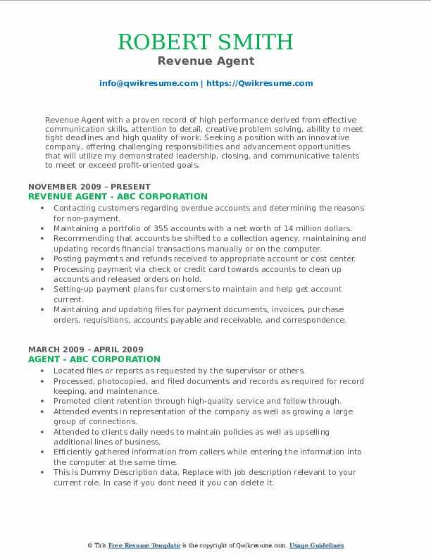 Revenue Agent Resume Format