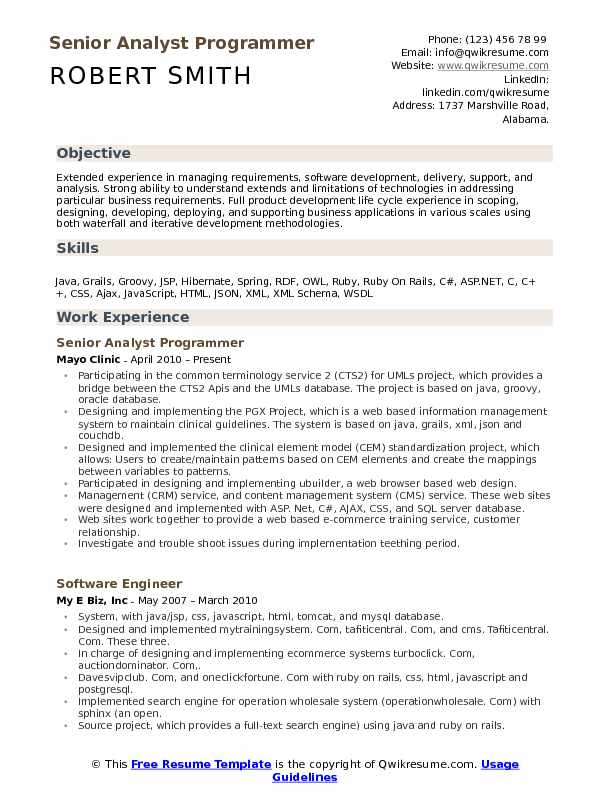 Senior Analyst Programmer Resume Sample