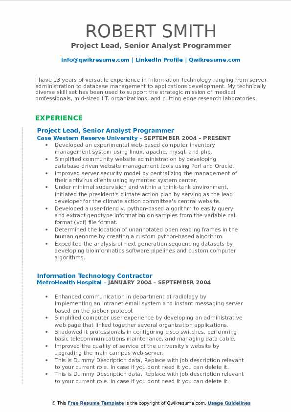 Project Lead, Senior Analyst Programmer Resume Format