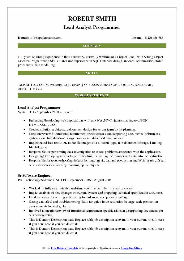 Lead Analyst Programmer Resume Model