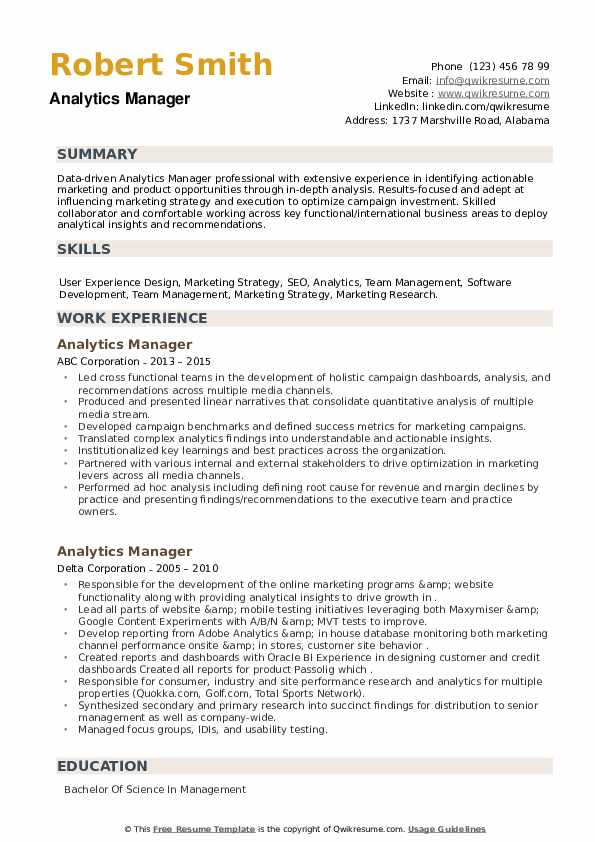 Analytics Manager Resume example