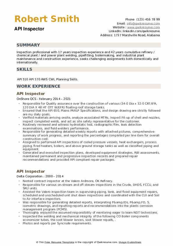 API Inspector Resume example