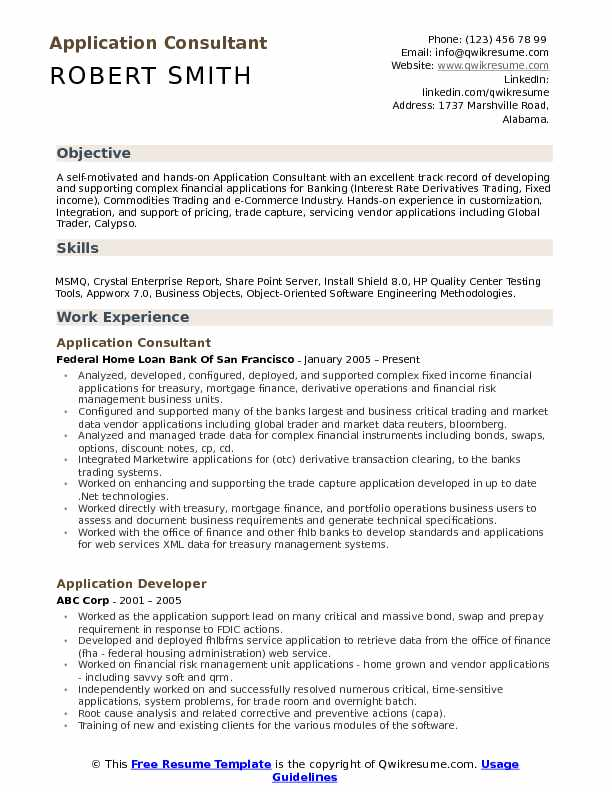 Application Consultant Resume Model