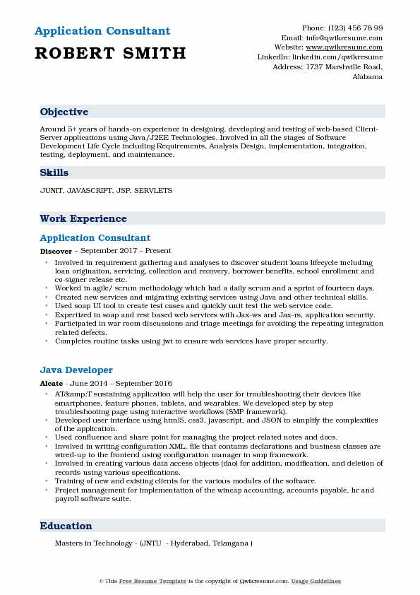 Application Consultant Resume Template