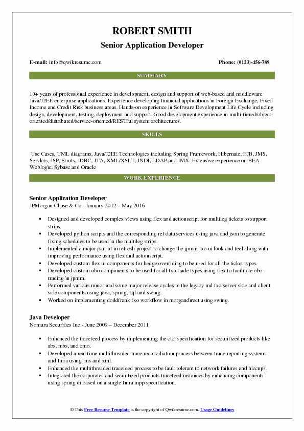 Senior Application Developer Resume Model