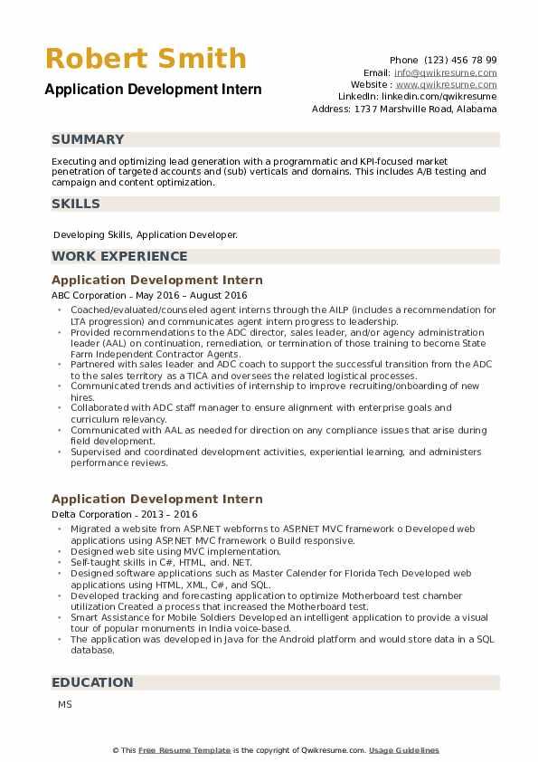 Application Development Intern Resume example