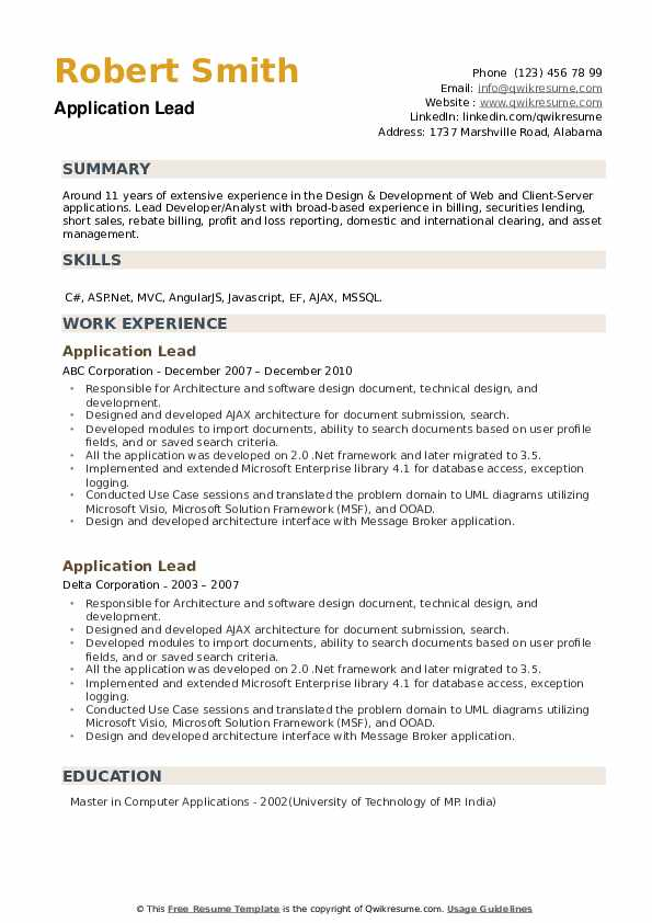 Application Lead Resume example