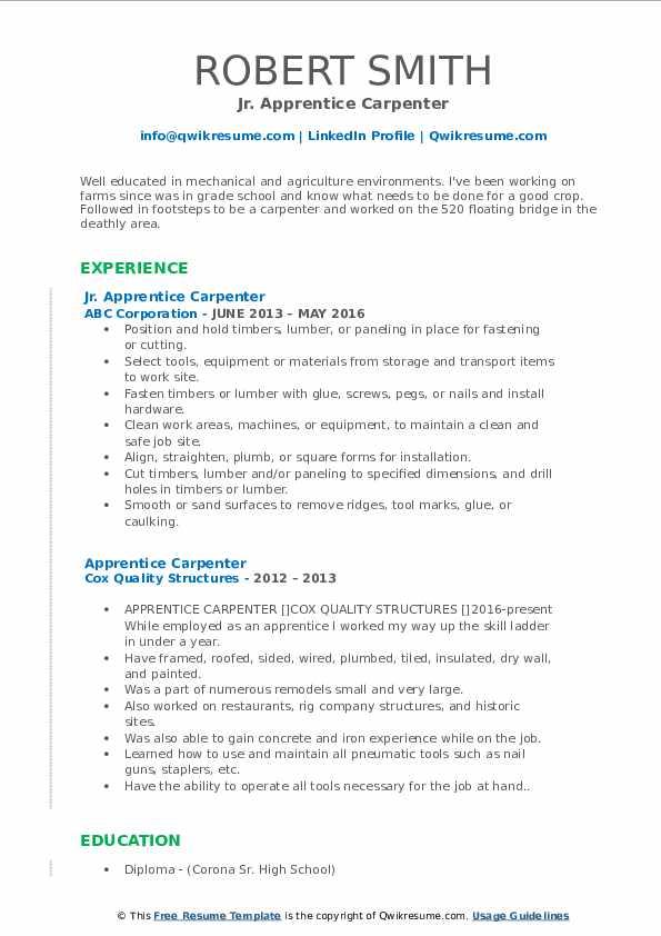 Jr. Apprentice Carpenter Resume Template