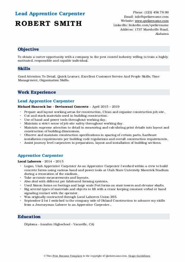 Lead Apprentice Carpenter Resume Example