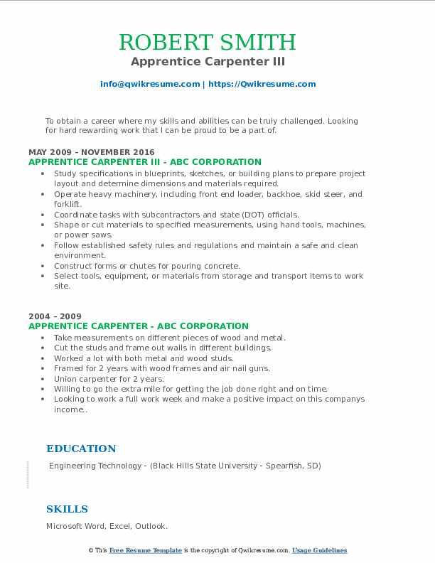 Apprentice Carpenter III Resume Sample