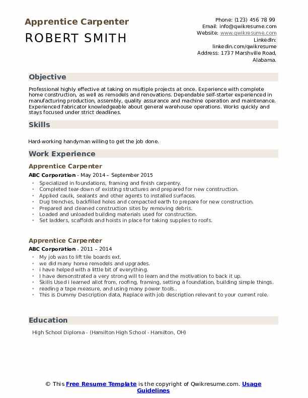 Apprentice Carpenter Resume example
