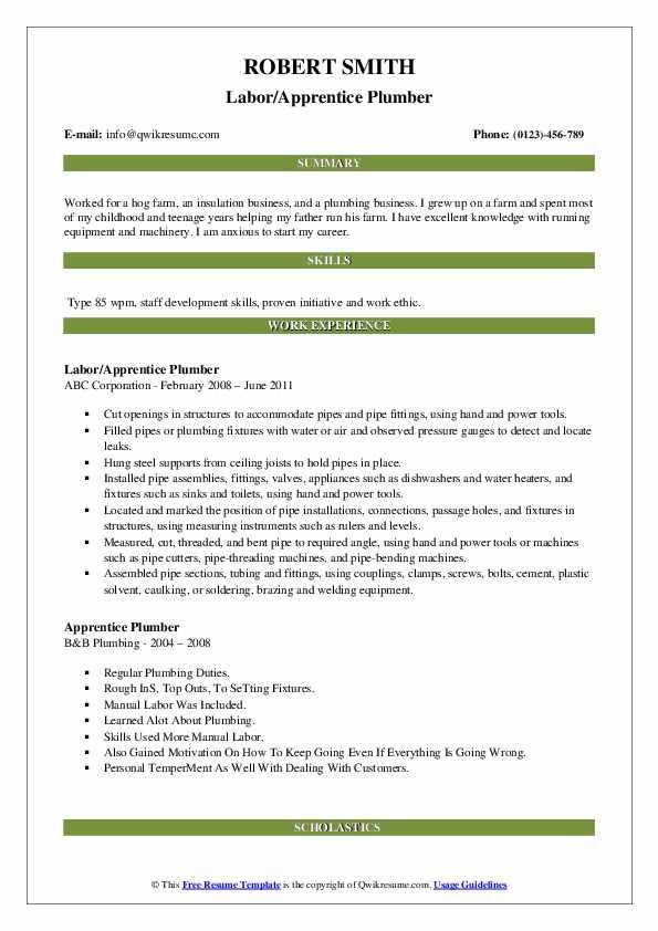 Labor/Apprentice Plumber Resume Example