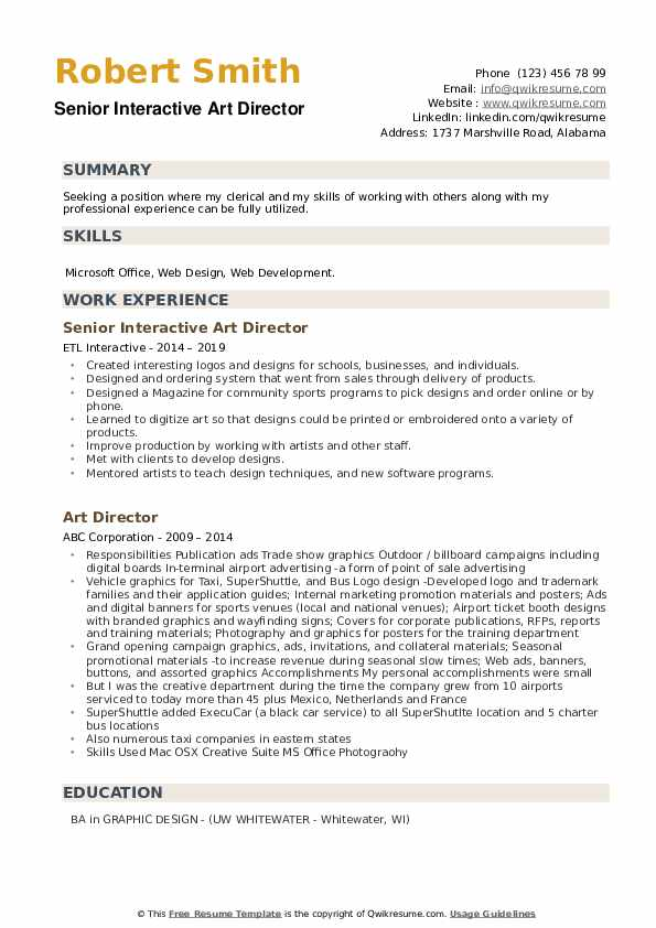 Senior Interactive Art Director Resume Example