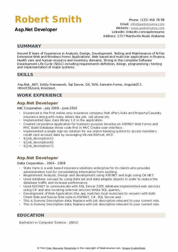 Asp.Net Developer Resume example