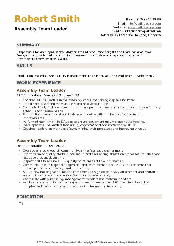 Assembly Team Leader Resume example