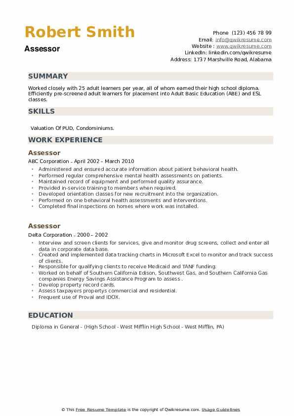Assessor Resume example