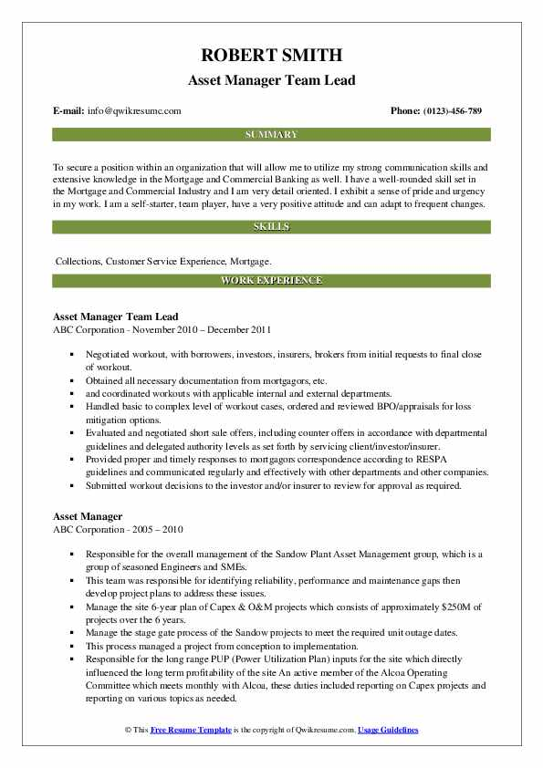 Asset Manager Team Lead Resume Example