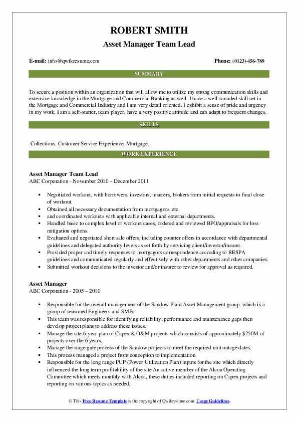 Asset Manager Team Lead Resume Format