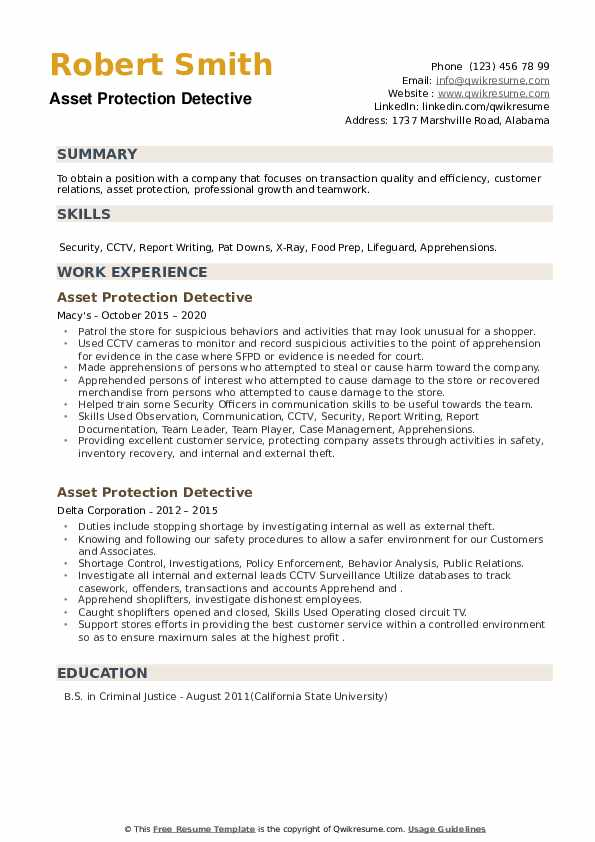 Asset Protection Detective Resume example